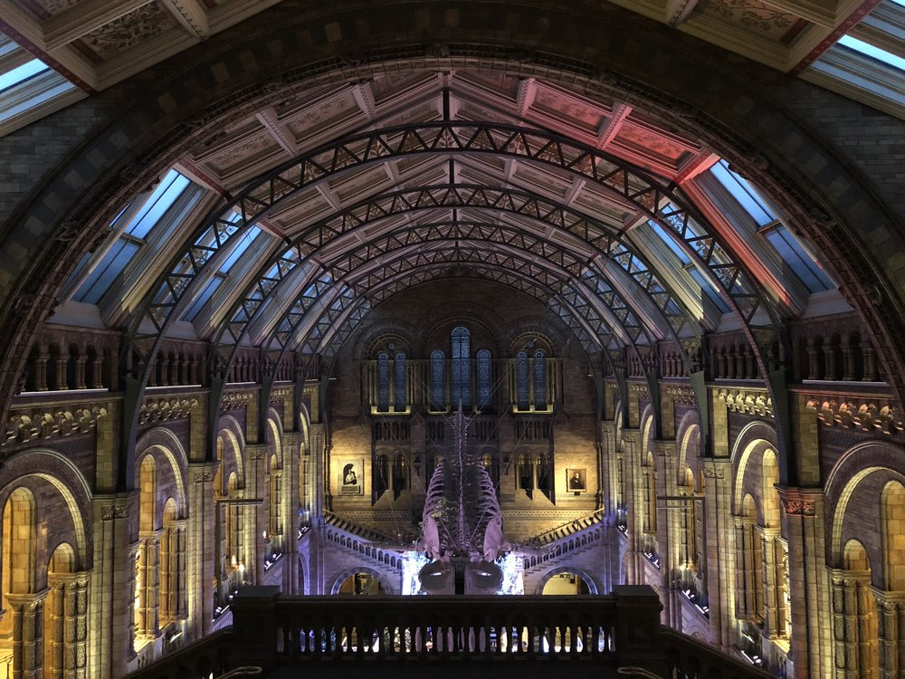 Behind the scenes image from a wedding reception at the natural history museum, taken after hindu wedding