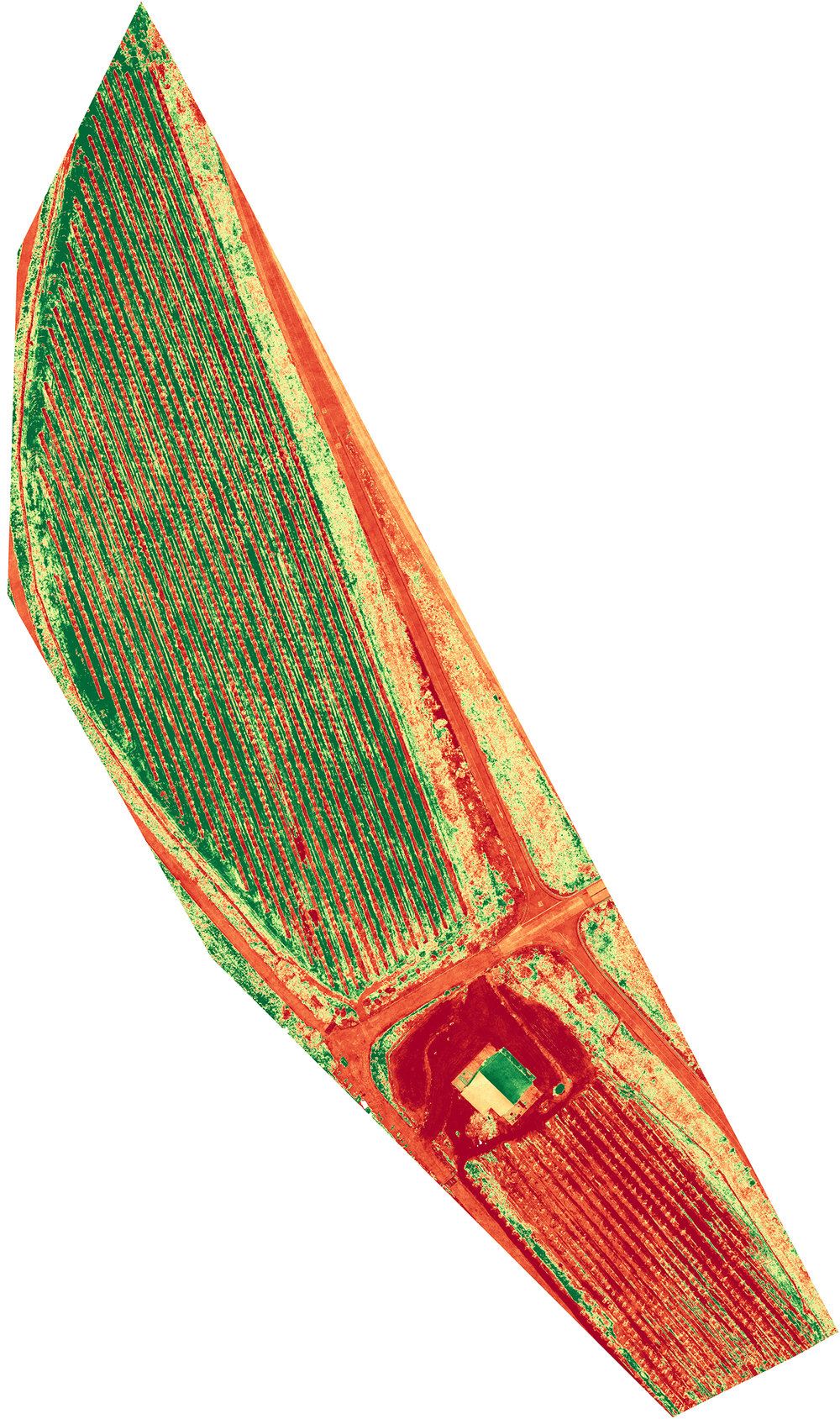 Plant health can be determined by color difference (NDVI).