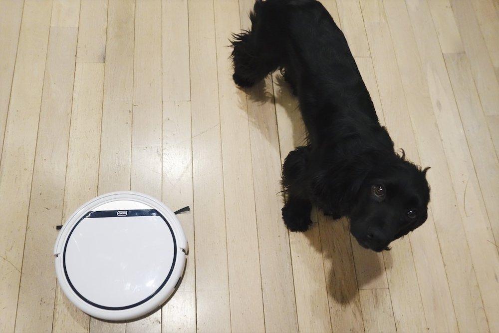 全自動お掃除ロボット おすすめ ILIFE V3s ペット抜け毛 犬抜け毛 Roomba ルンバ