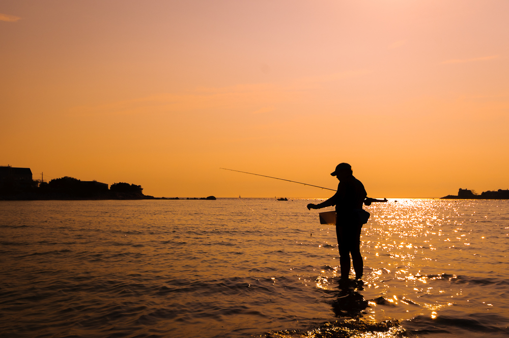cape fisherman, 2013.
