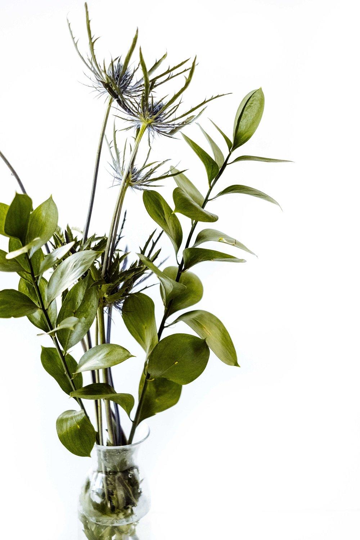 fall-filler-floral-focus-mozart-shiplap
