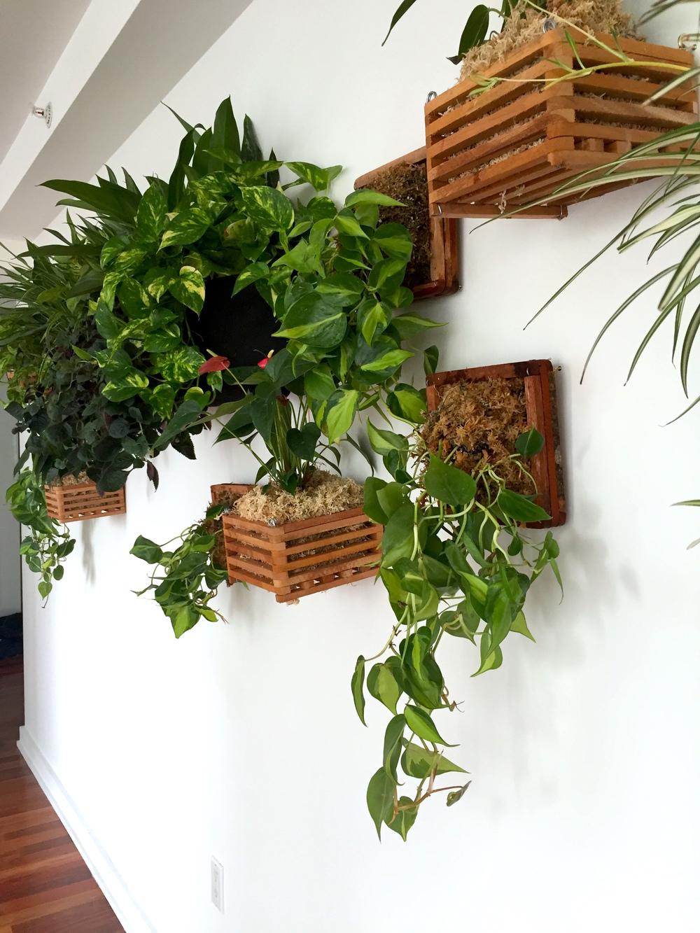 wall install 3.JPG