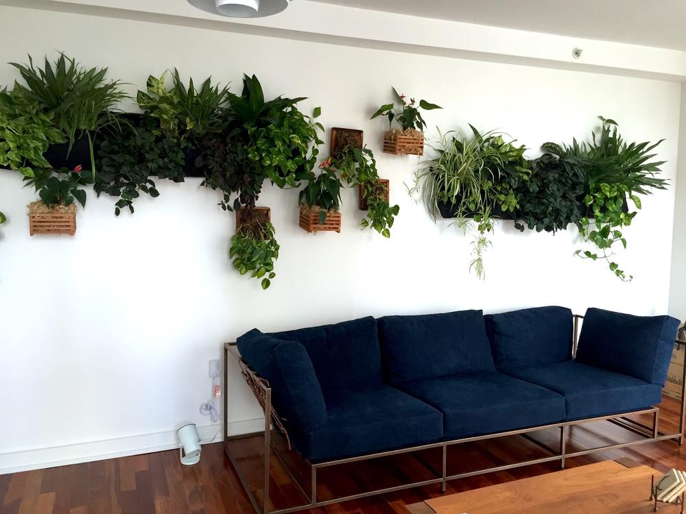 wall install 2.JPG