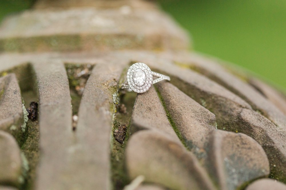 central-park-engagement-session-top-ct-nyc-wedding-photographer-shaina-lee-photography-photo