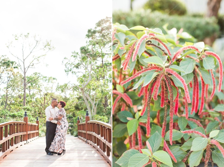 Morikami Museum & Japanese Gardens Anniversary Session in Delray ...