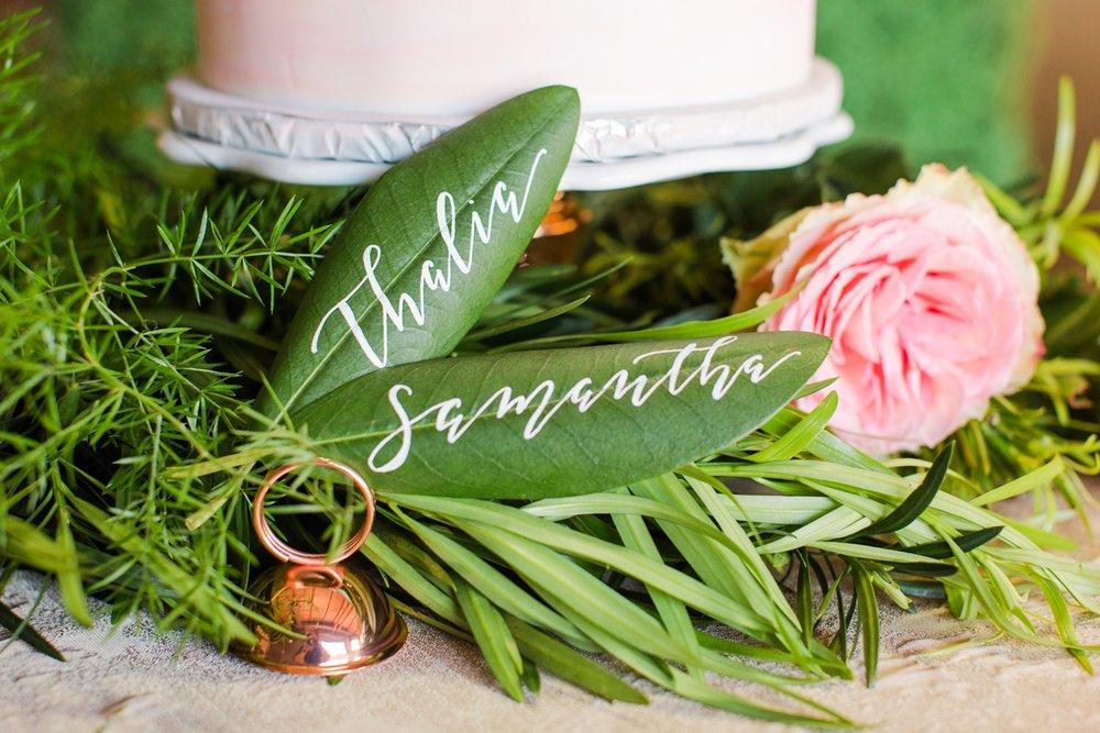 nob-hill-jane-connecticut-nyc-wedding-photographer-shaina-lee-photography-photo