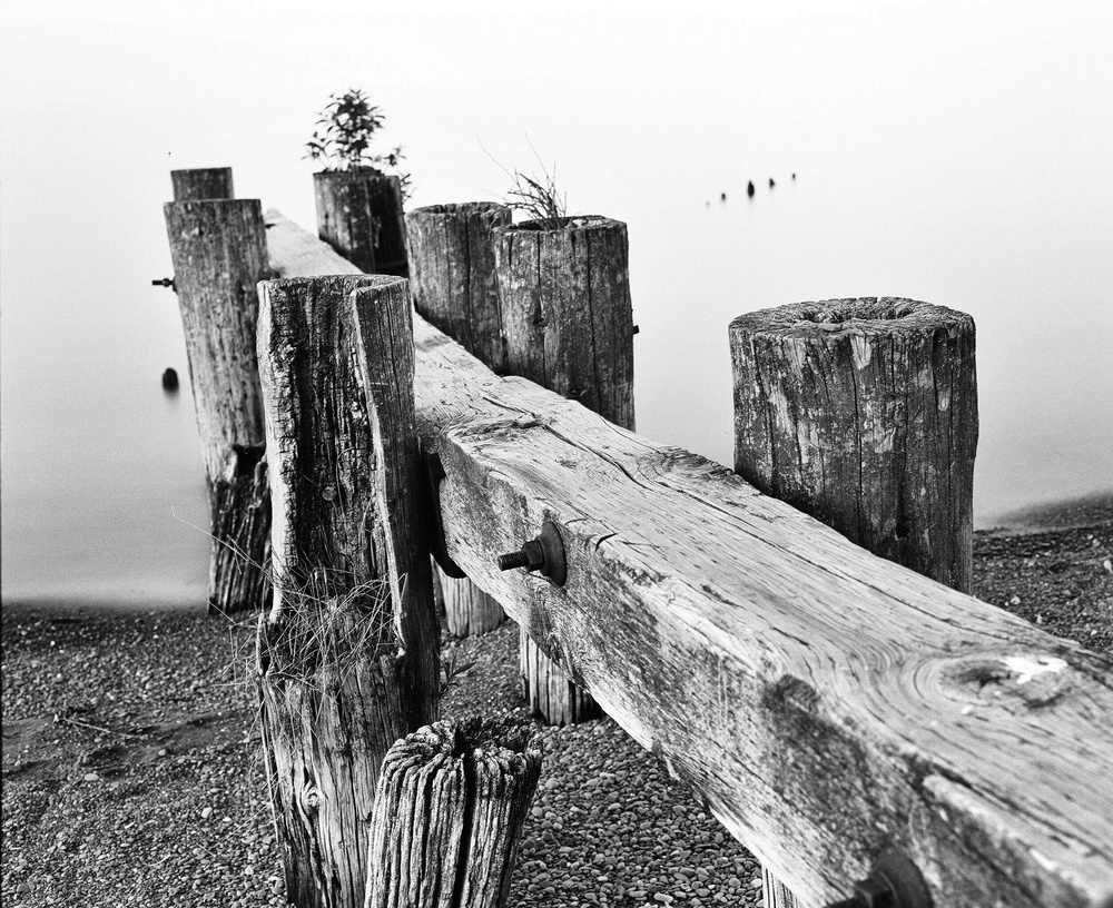 Fifty Point Groynes Medium Format