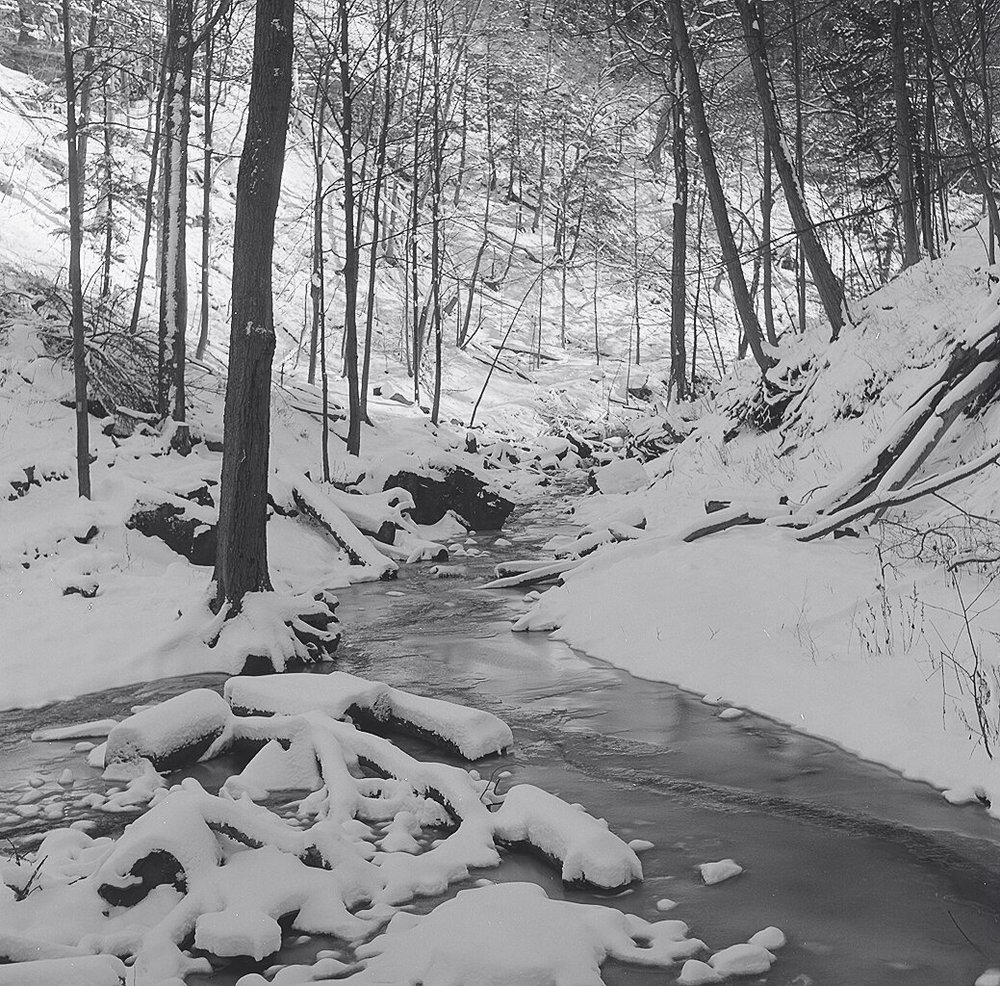 Downstream from Tiffany Falls