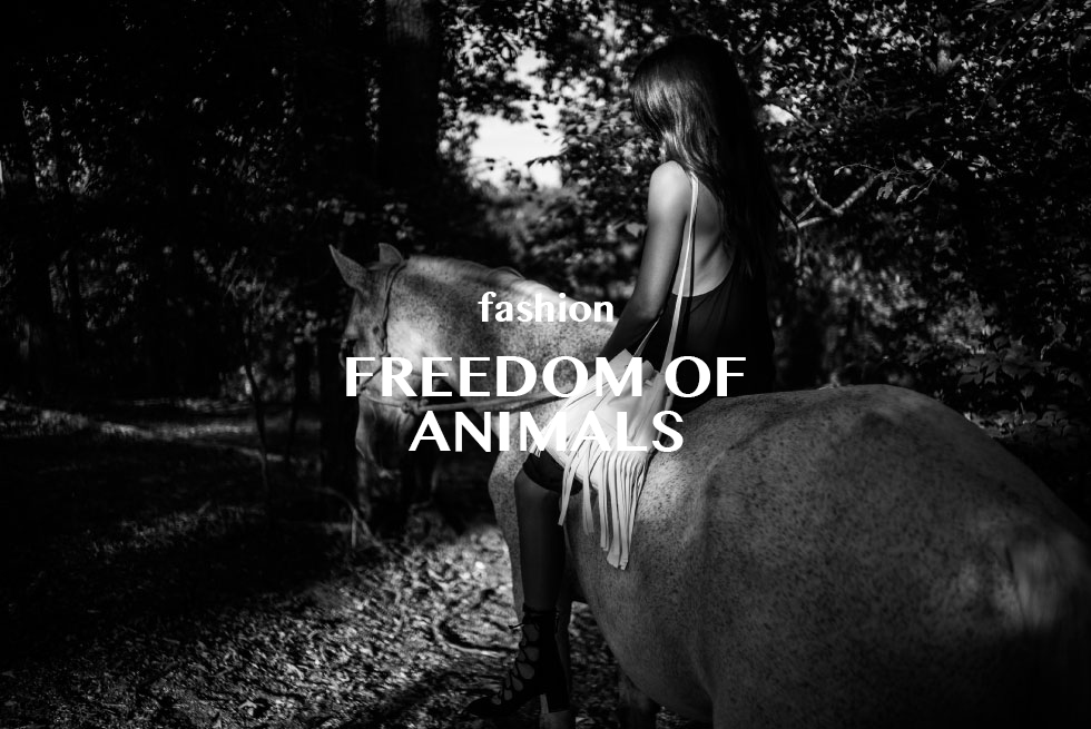 FREEDOM OF ANIMALS OFFERS LUXURY 'ANIMAL-FREE' BAGS March 2, 2016