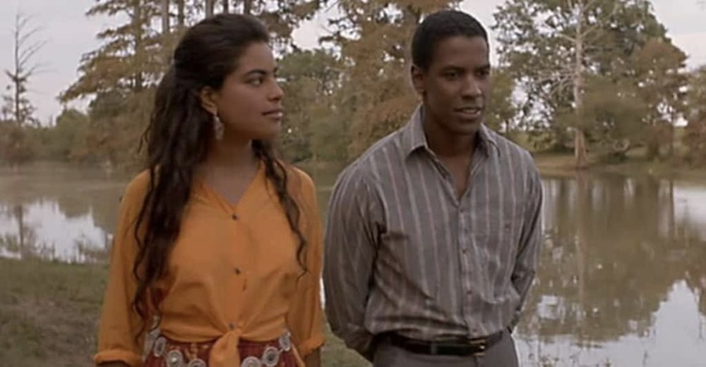 Mississippi Masala - directed by Mira Nair