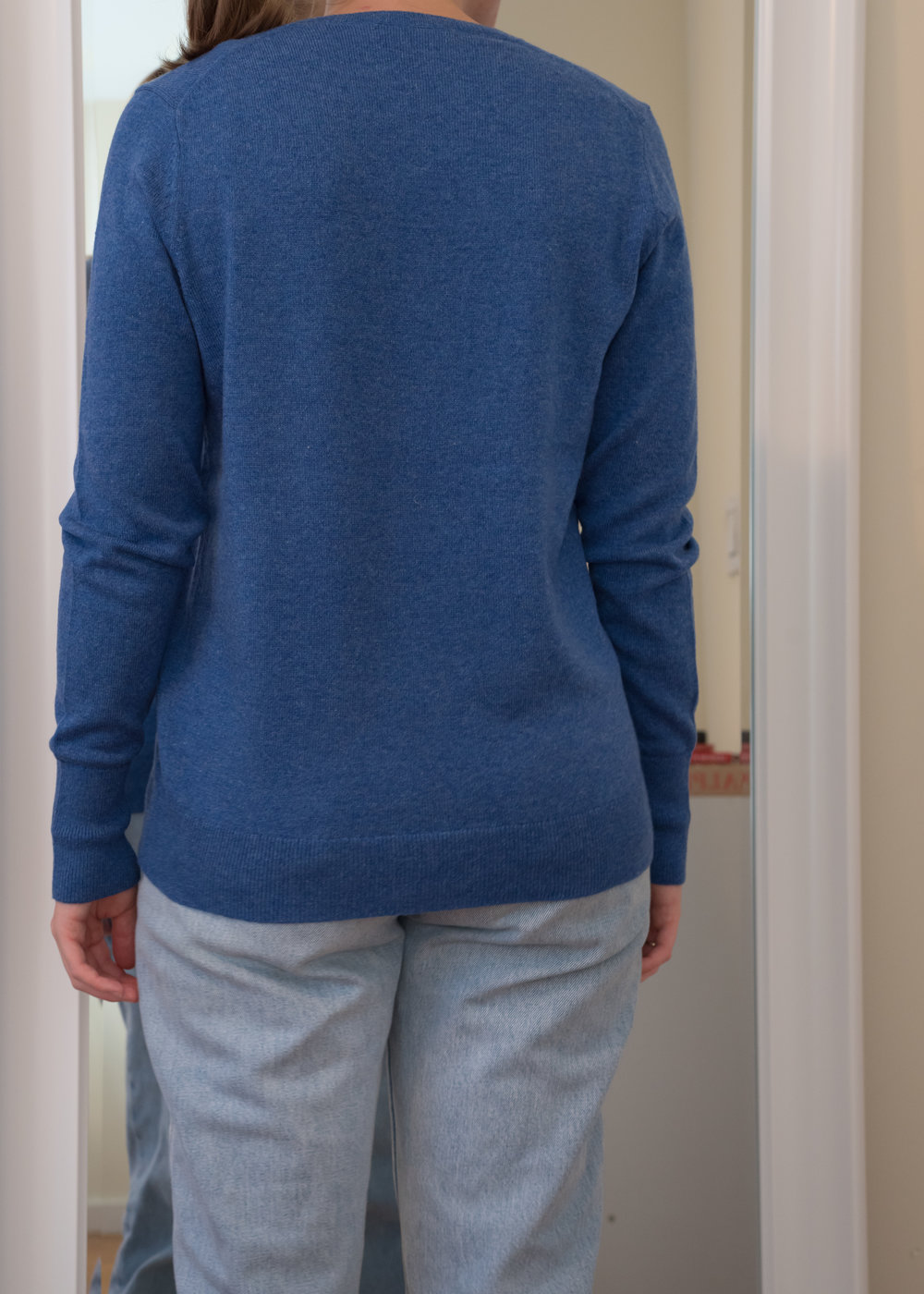 Everlane Cashmere V-Neck Sweater - Back View
