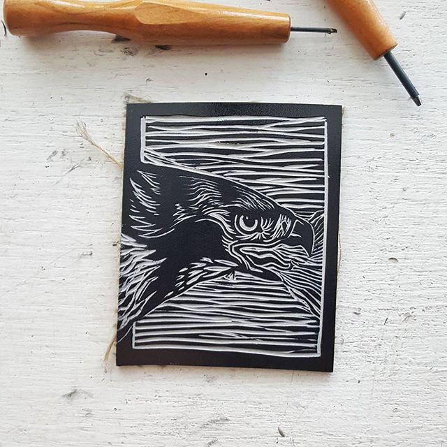 Speak.  #printmaking #linocut #linoleum #lino #reliefprint #blockprint #grabado #gravura #art #illustration #handmade #redtailedhawk #red #tail #hawk #buteojamaicensis #ifeelsrusty #helloagain