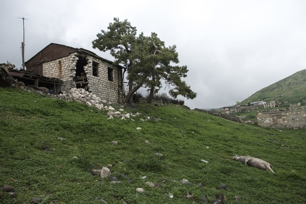Frontline village Talish suffered severely from the re-ignited conflict. Villagers were forced to leave their houses, and to leave their animals unattended.