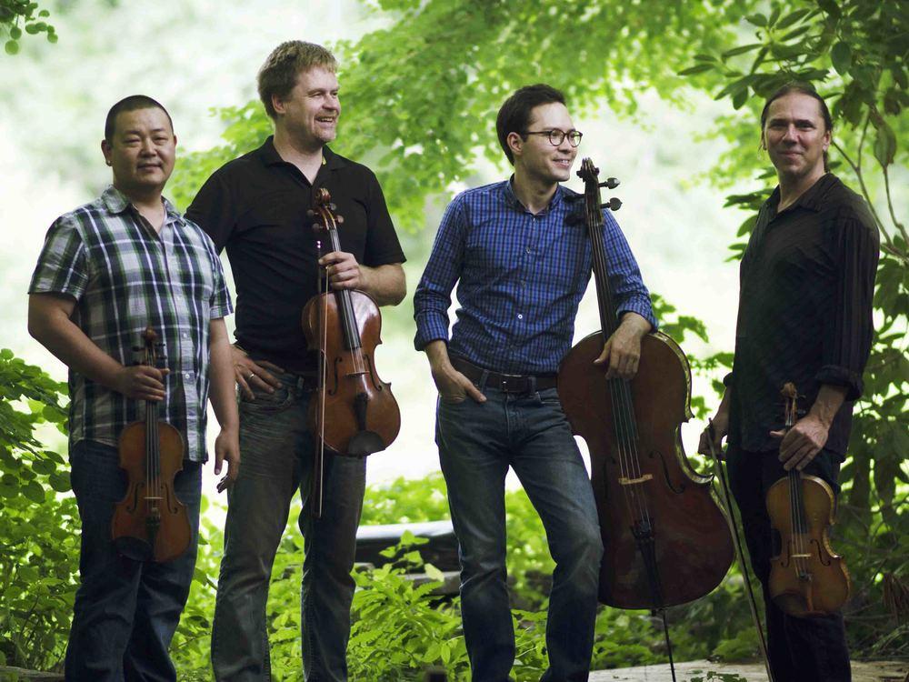 The acclaimed Pedroia Quartet