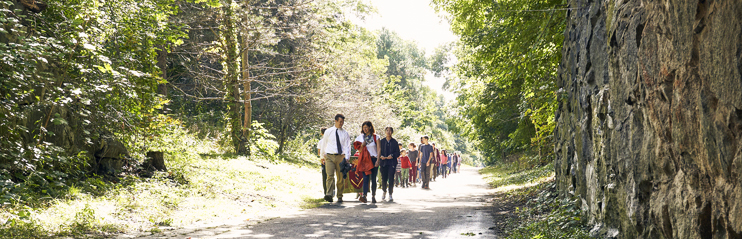 The Waldorf School of Lexington's campus abuts the Minuteman Rail Trail, connecting the school to Arlington's Great Meadows as well as green space in our home town of Lexington.