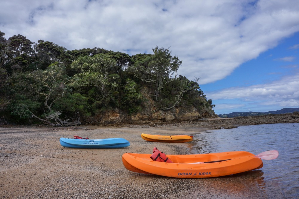 Kayaking in Paihia.