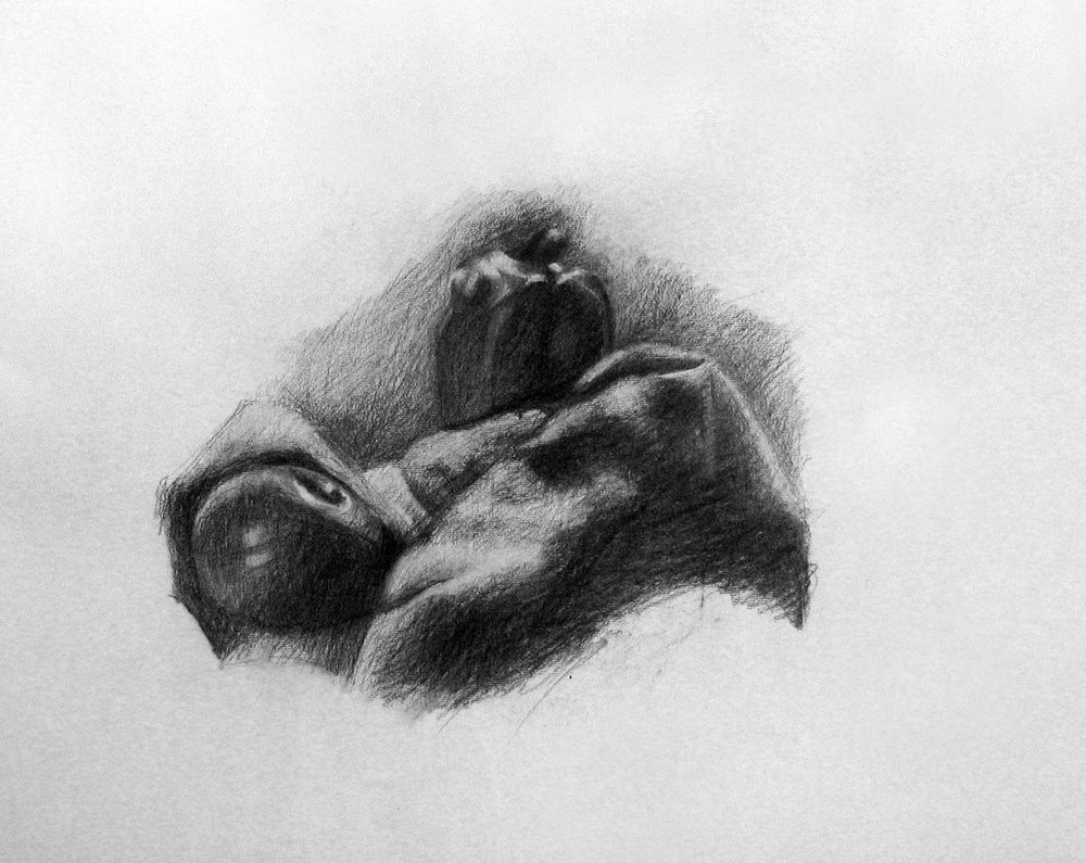 Still Life, charcoal on paper,500x700 mm