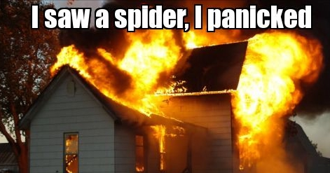 Burning-house-I-saw-a-spider-I-panicked-941.png.jpg