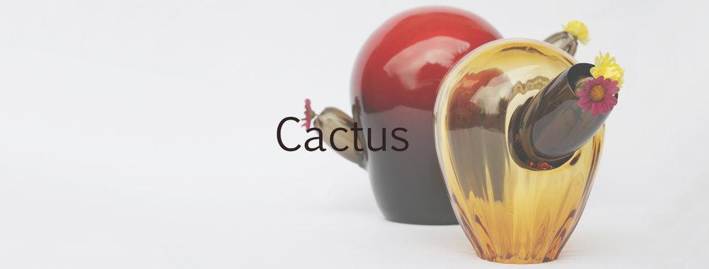 CoverCactus.jpg
