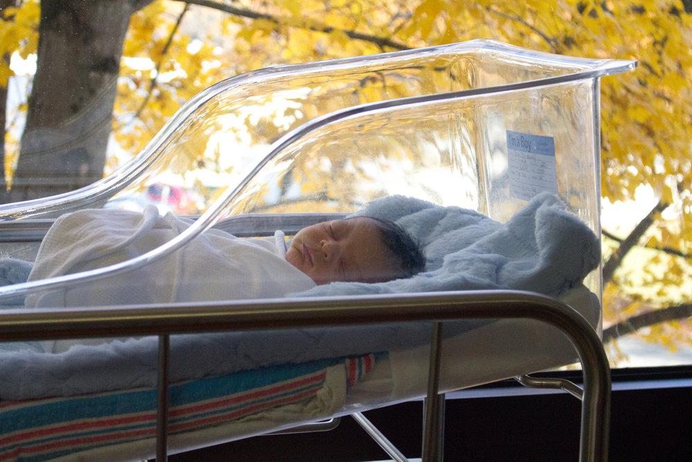 Rex-hospital-newborn-photography-fresh-48-Rex-hospital-newborn-photographer-in-bassinet-in-front-of-window
