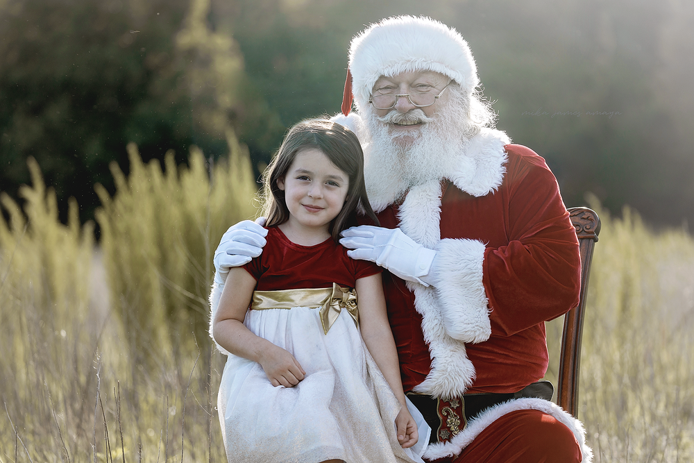 cute little girl in a holiday dress posing with Santa in a field