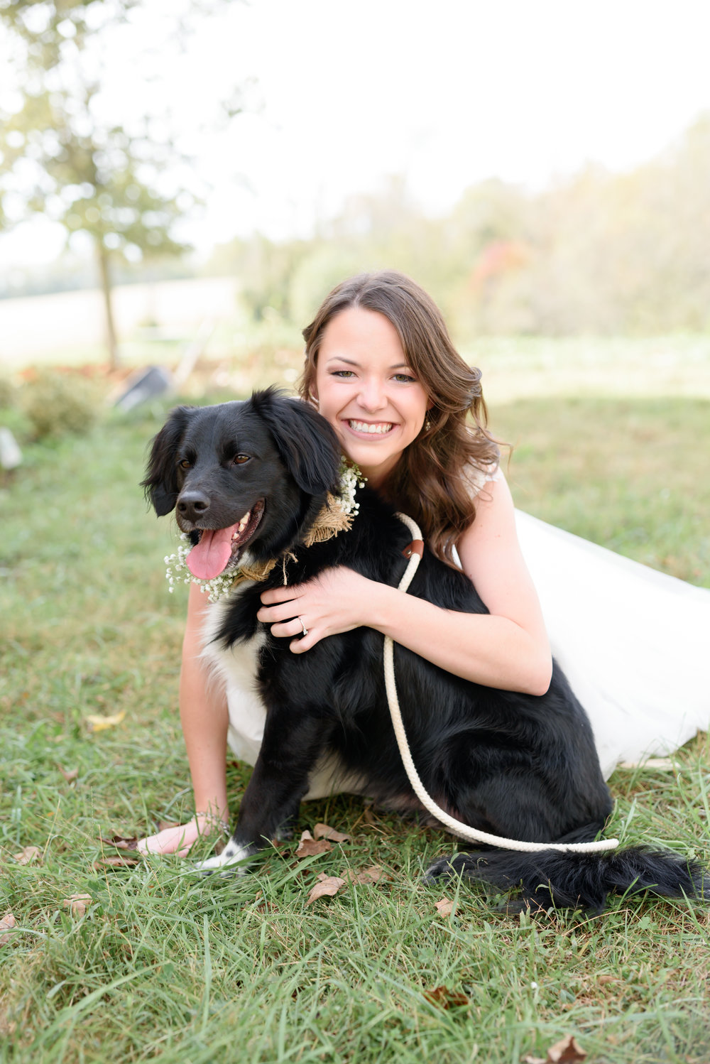 bride with dog kentucky wedding january june photography