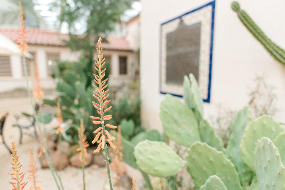 <alt>mary's basilica phoenix arizona january june photography kentucky photographer</alt>