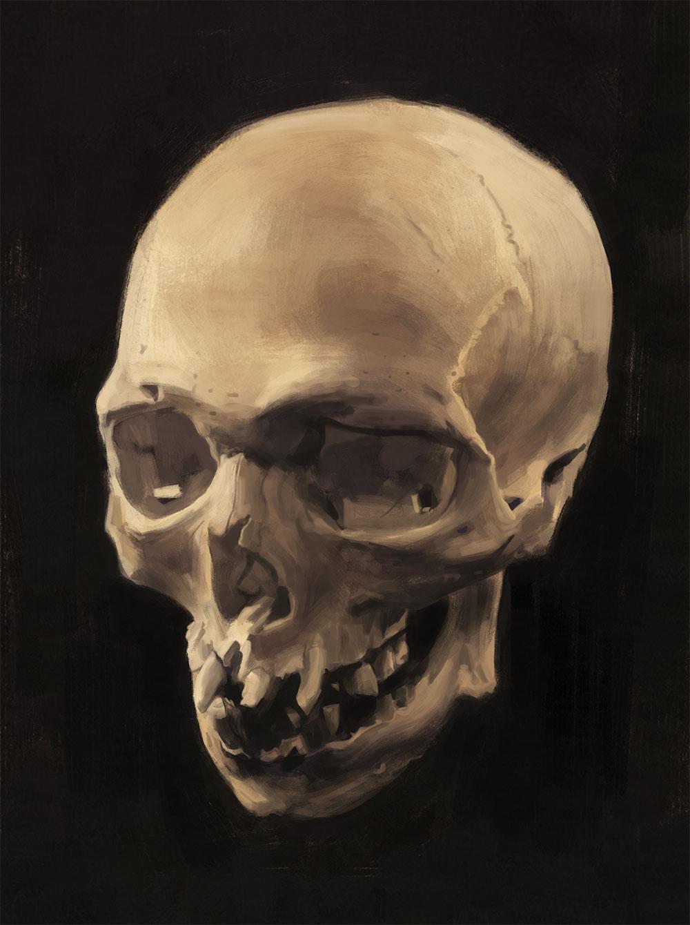 The Mystery Skull