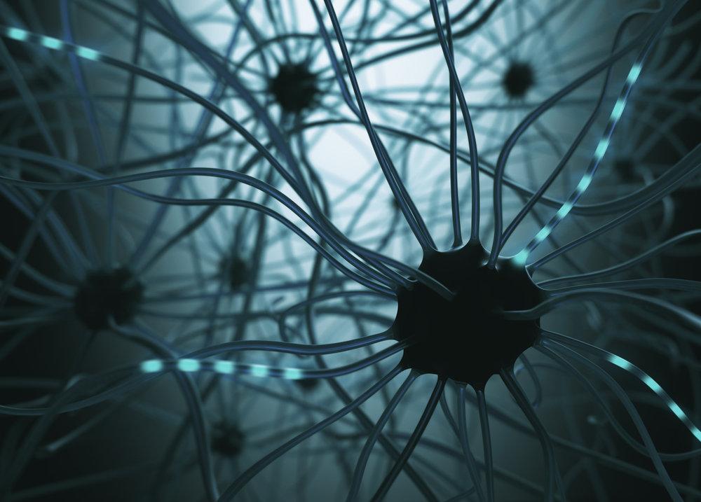 Neurons concept