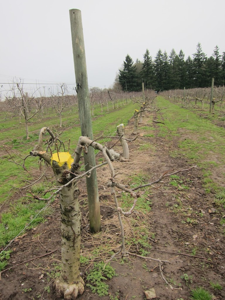 farm-mar-2012-001