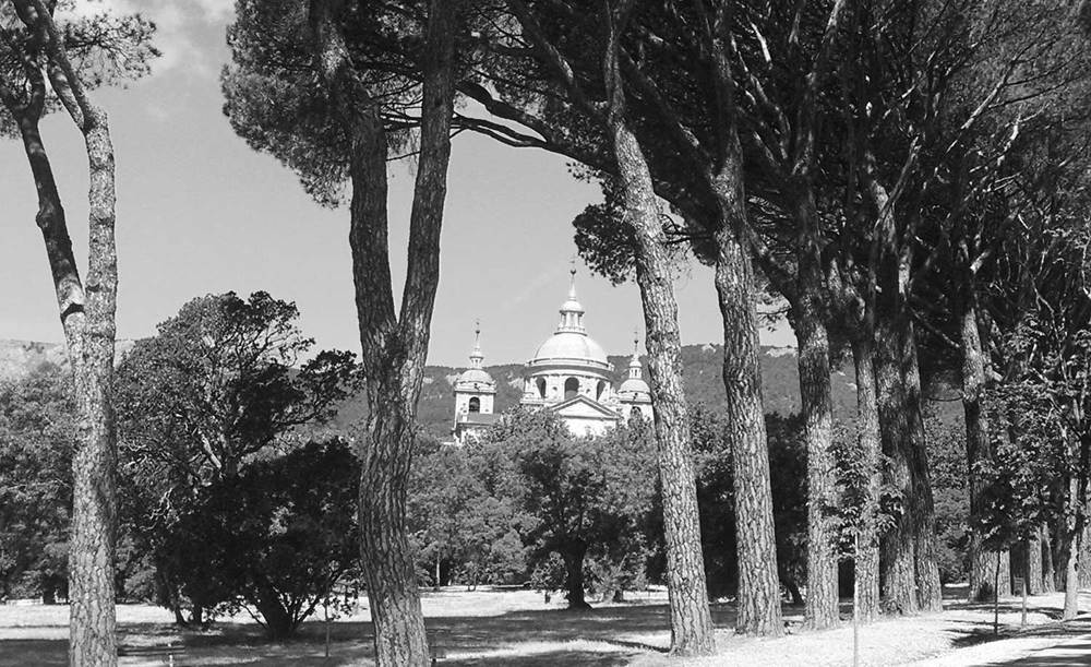 OG-monastery_el_escorial_Tree_Path_Madrid_Spain-062015-BW-WEB-1500.jpg