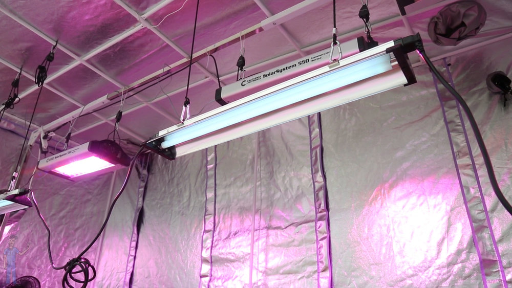 3. uvb with led fixtures.jpg