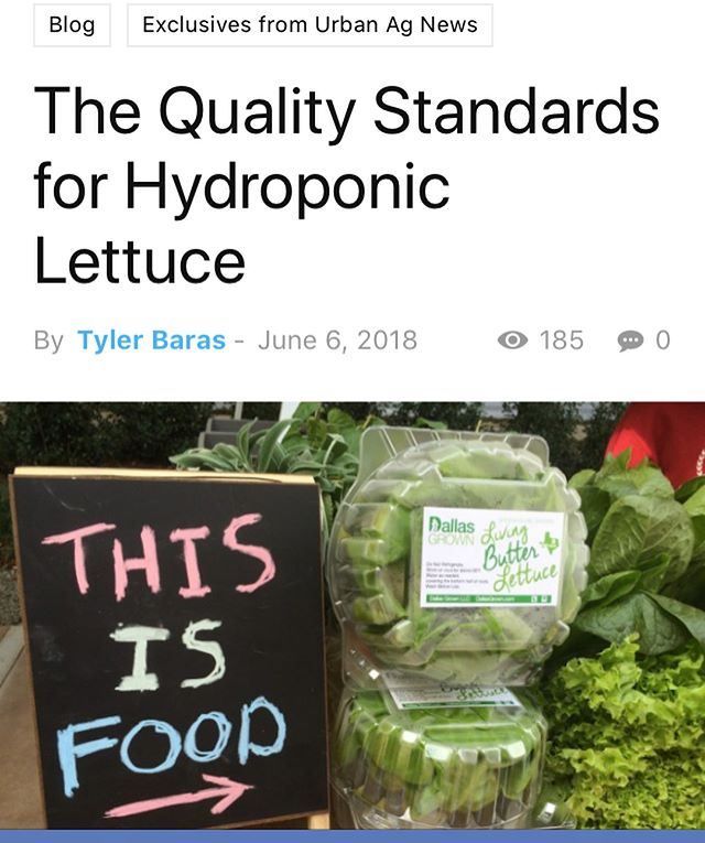 "Better get that Butter right! Check out my new post on Urban Ag News about the ""Quality Standards"" for hydroponic lettuce... #moreprolessbro #topshelf #commercialhydroponics #hydroponiclettuce"