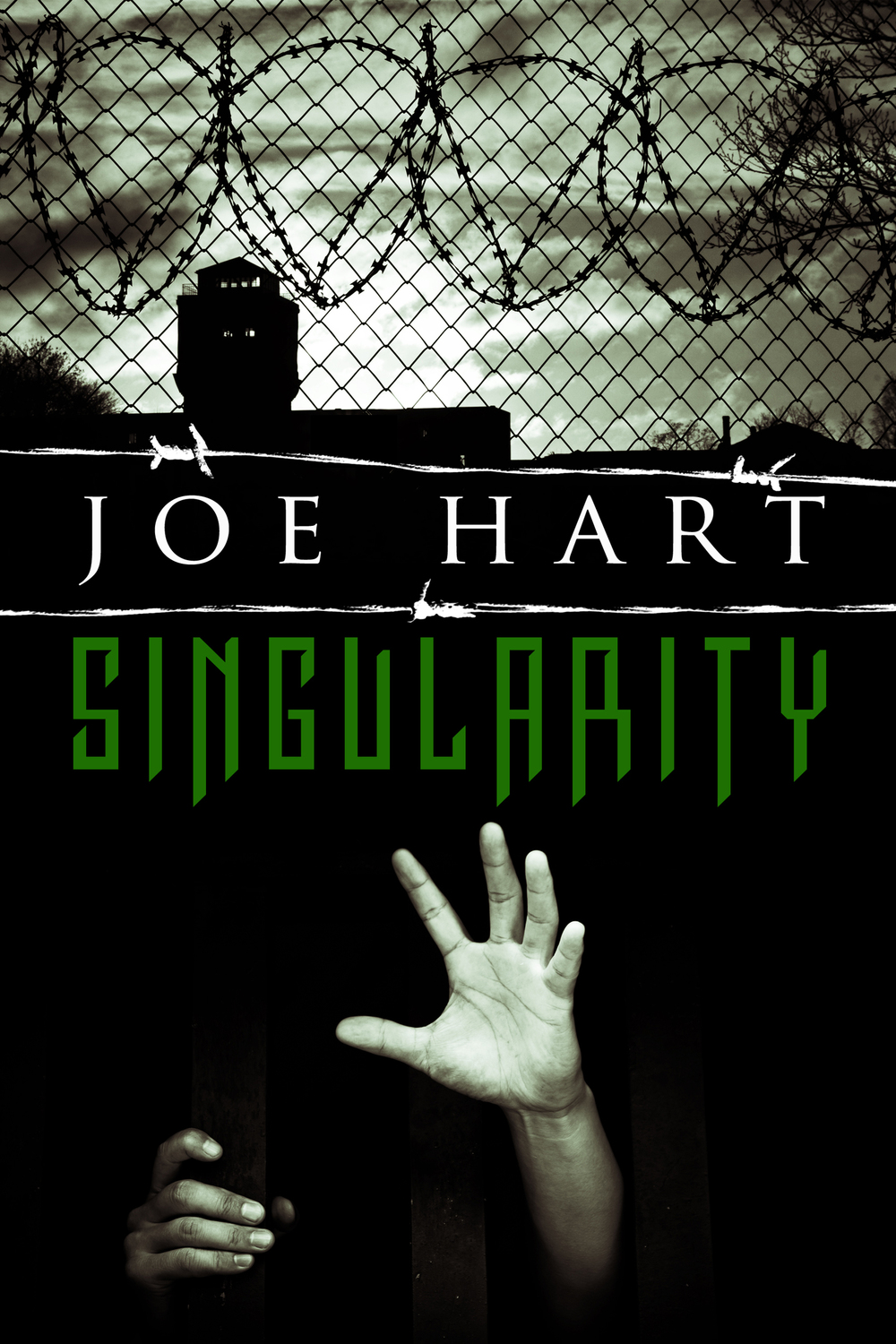 Singularity ebook.jpg