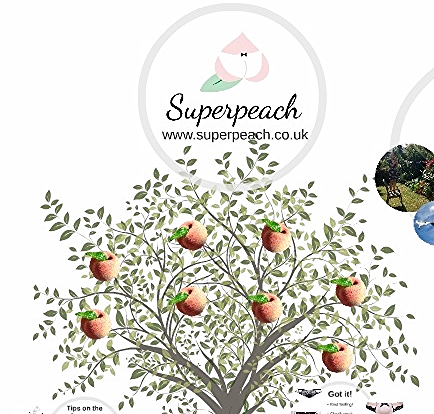 Superpeach Autumn Fair blog Prezi presentation