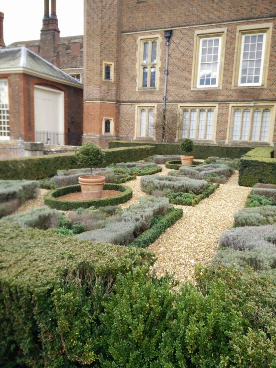 Superpeach blog Hampton Court hedges