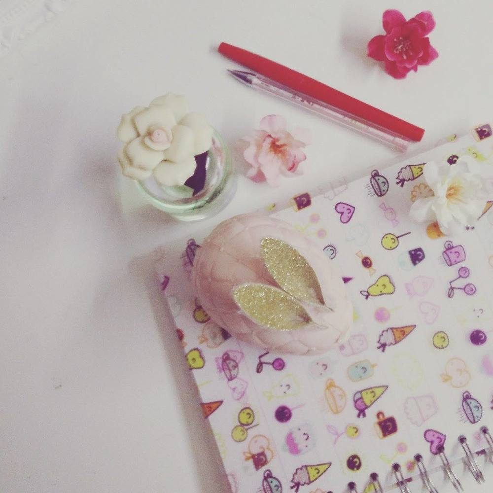 Superpeach blog - My experience workinging with bloggers - notebook bunny