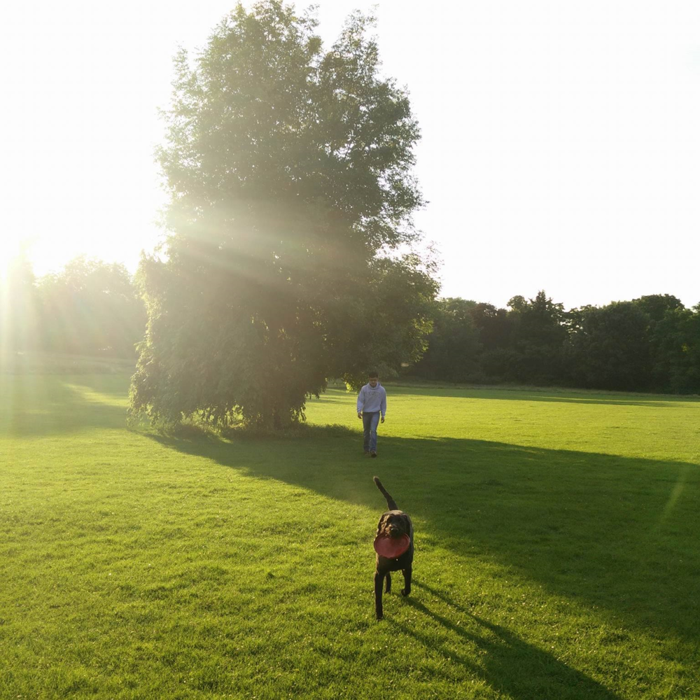 Superpeachlife blog - sunsets
