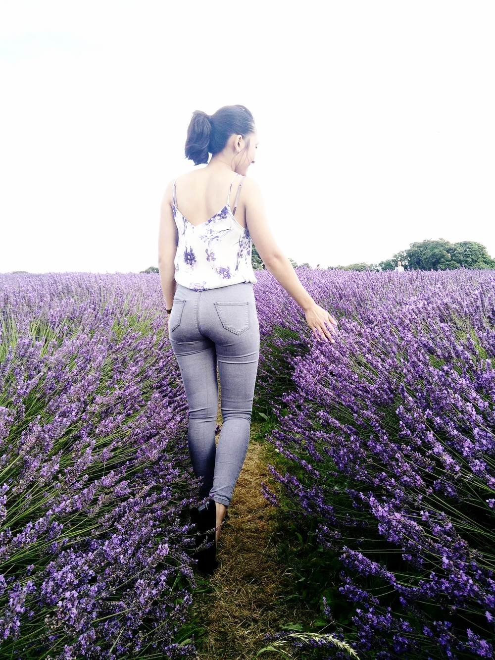 Superpeachlife blog Mayfield lavender 4