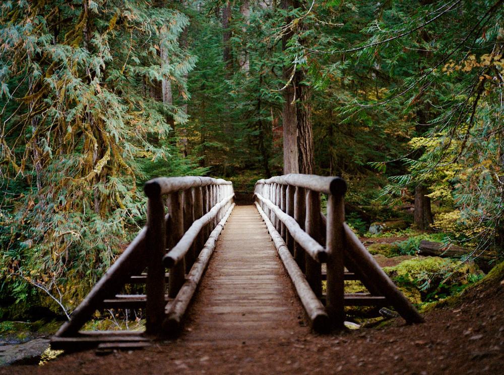Bridge to Bagby Hot Springs, Mount Hood, OR , 2011, Pigment print