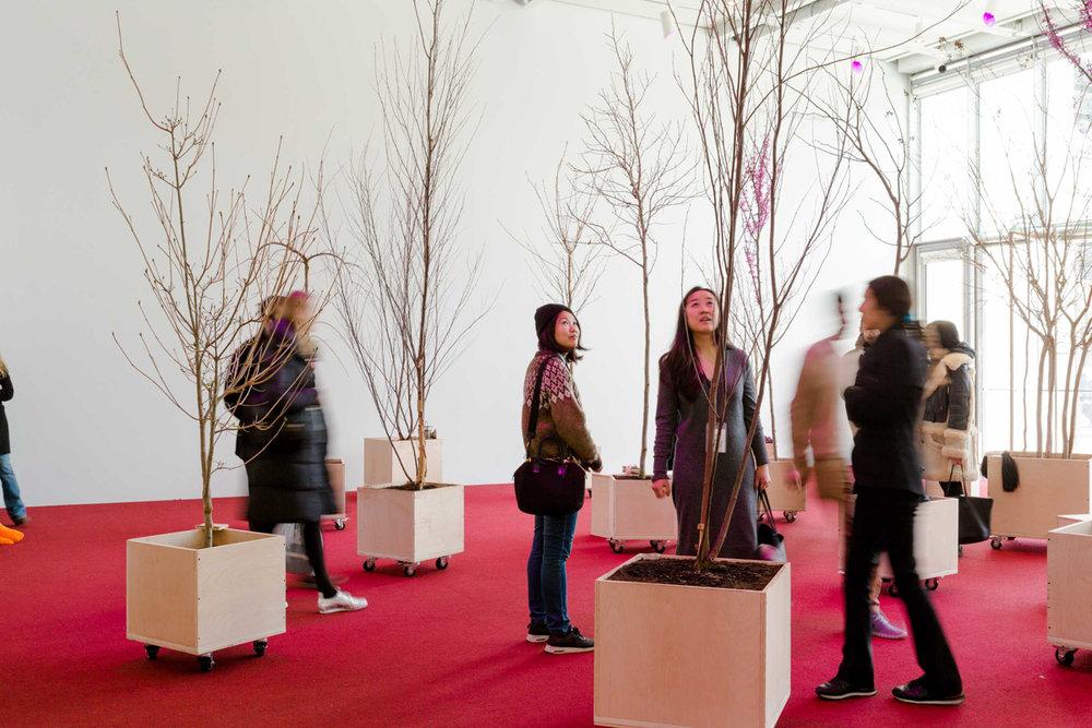 Exhibition Views_Photos by Daniel Terna-26.jpg