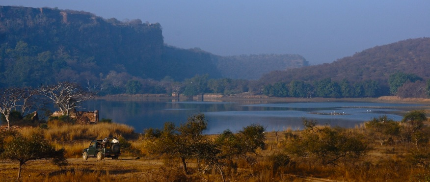 Ranthambhor National Park, India
