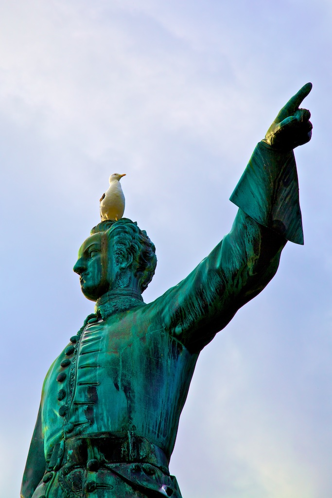 A sea gull's opinion of the bellicose king Charles XII. Stockholm, Sweden.