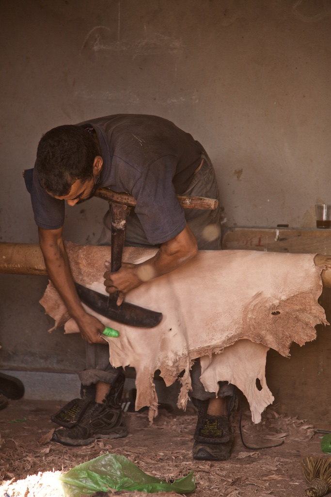 Preparing a goat skin the medieval way. Marrakesh, Morocco