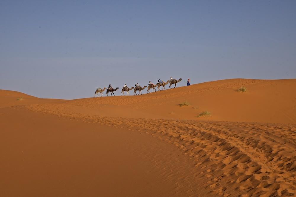 Desert caravan, crossing the Sahara.