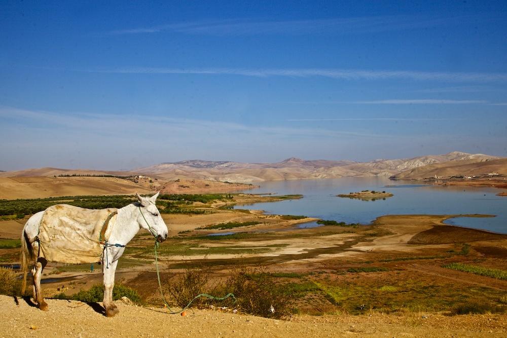 Asif Tidili, Morocco.