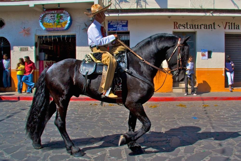 Hoofing it like Emiliano Zapata. Revolution day, Tepoztlán, Mexico.