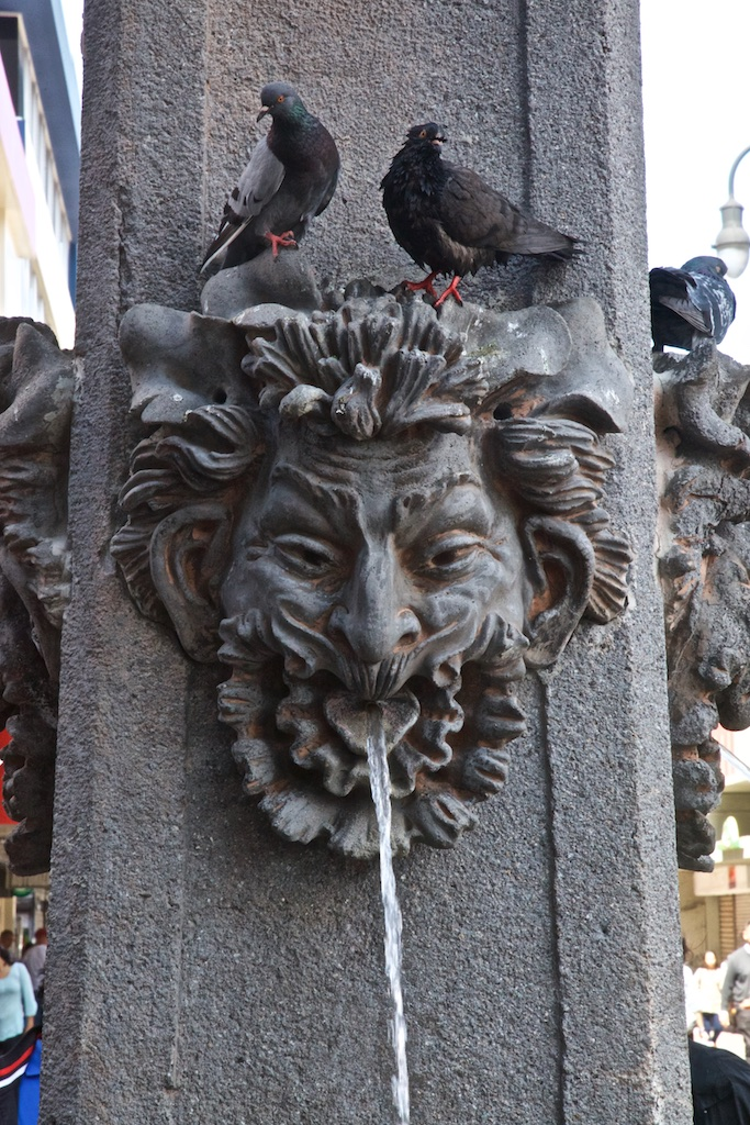 - Fountains & Clocks: There is a curious hint of disgust expressed by the fountain head's dislike concerning the two insouciant pigeons that have settled on top of him.