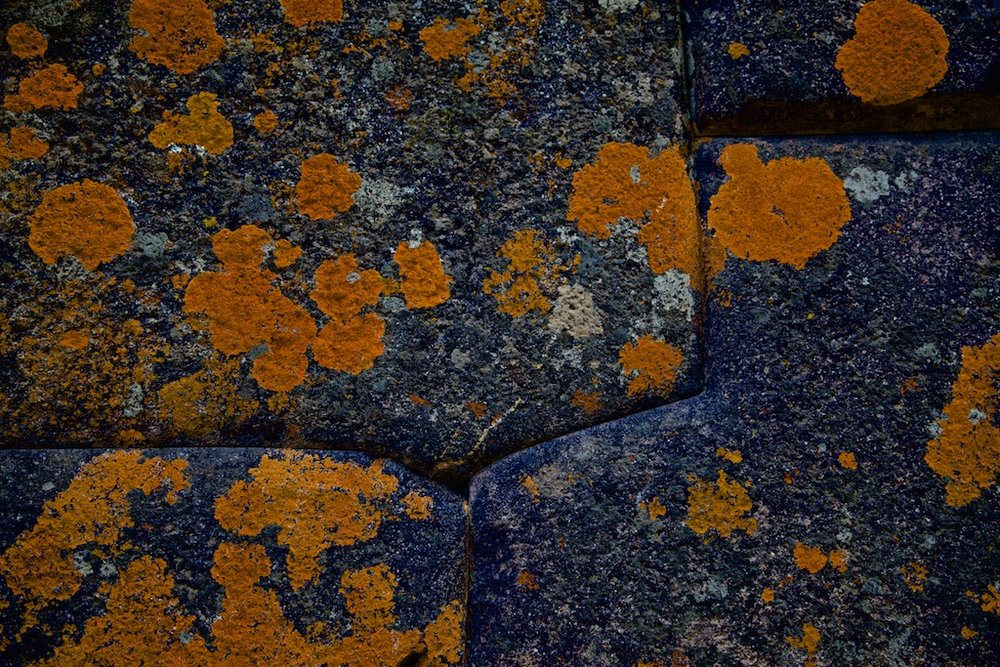 - Abstracts: Liquen, the first living thing that perishes when air is contaminated, here eating away at century-old, perfectly-fitted, inka-hewed stone foundations.