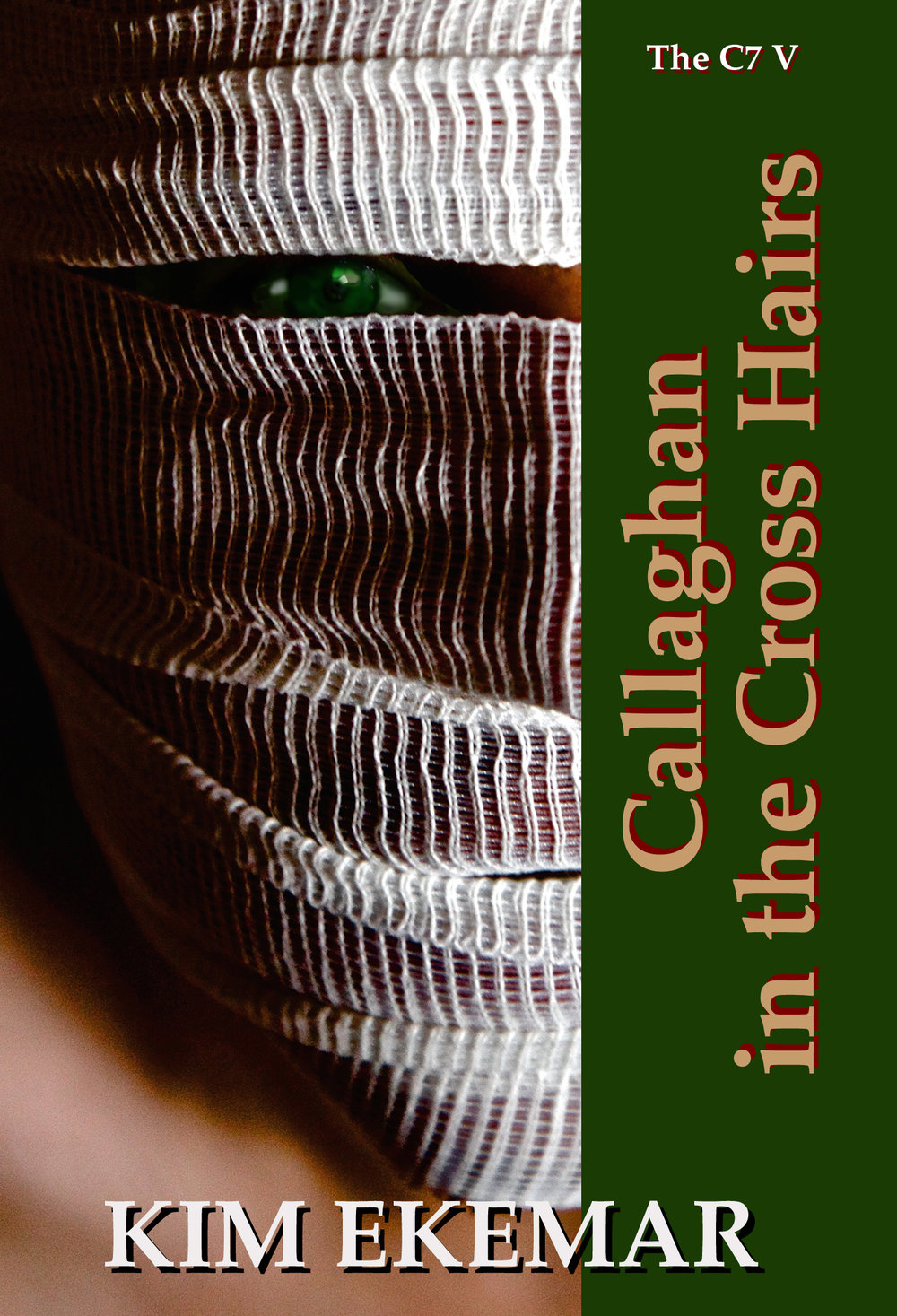 180429 KINDLE Callaghan in the Cross Hairs.jpg